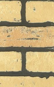 Cтеновые панели: картинки и дизайн