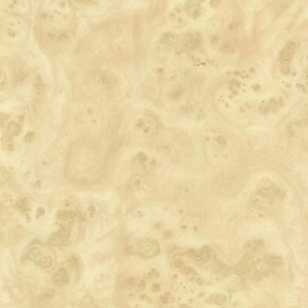 Береза карельская светлая