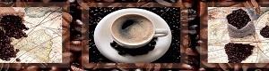 Кухонный фартук ДВП География кофе