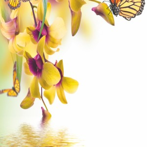 Потолок ПВХ декоративный Бабочка