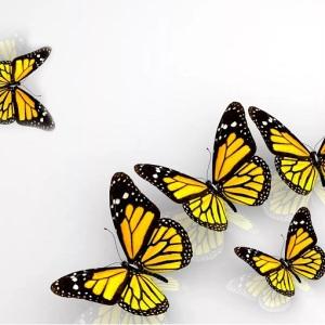 Потолок ПВХ декоративный Бабочки