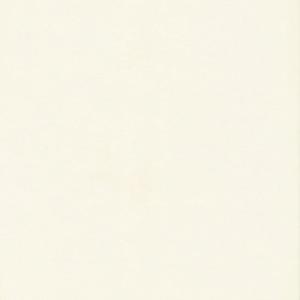 Панель МДФ стеновая Белый глянец